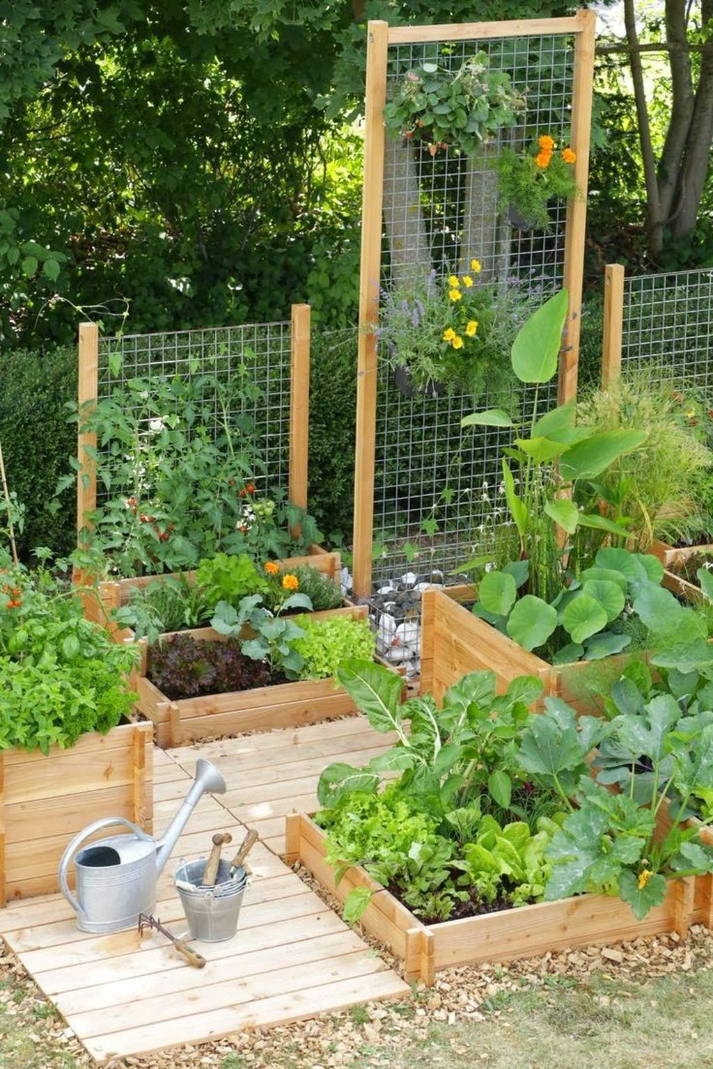 Small Vegetable Garden Ideas Pictures