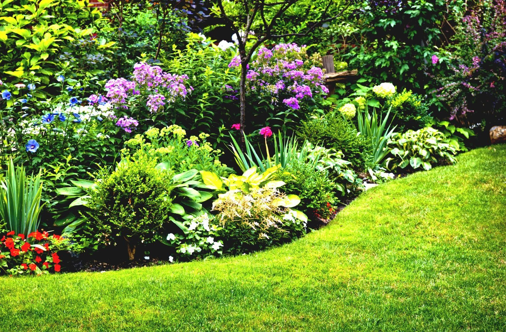 Full Sun Garden Ideas