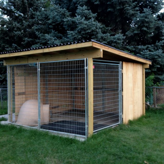 Outdoor Dog Kennel With Roof