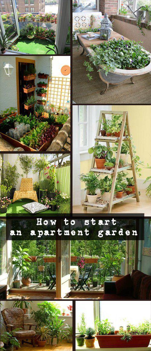 Indoor Gardens For Apartments