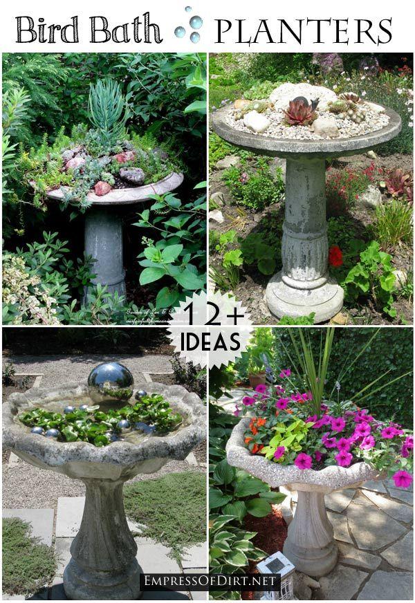 Bird Bath Garden Ideas