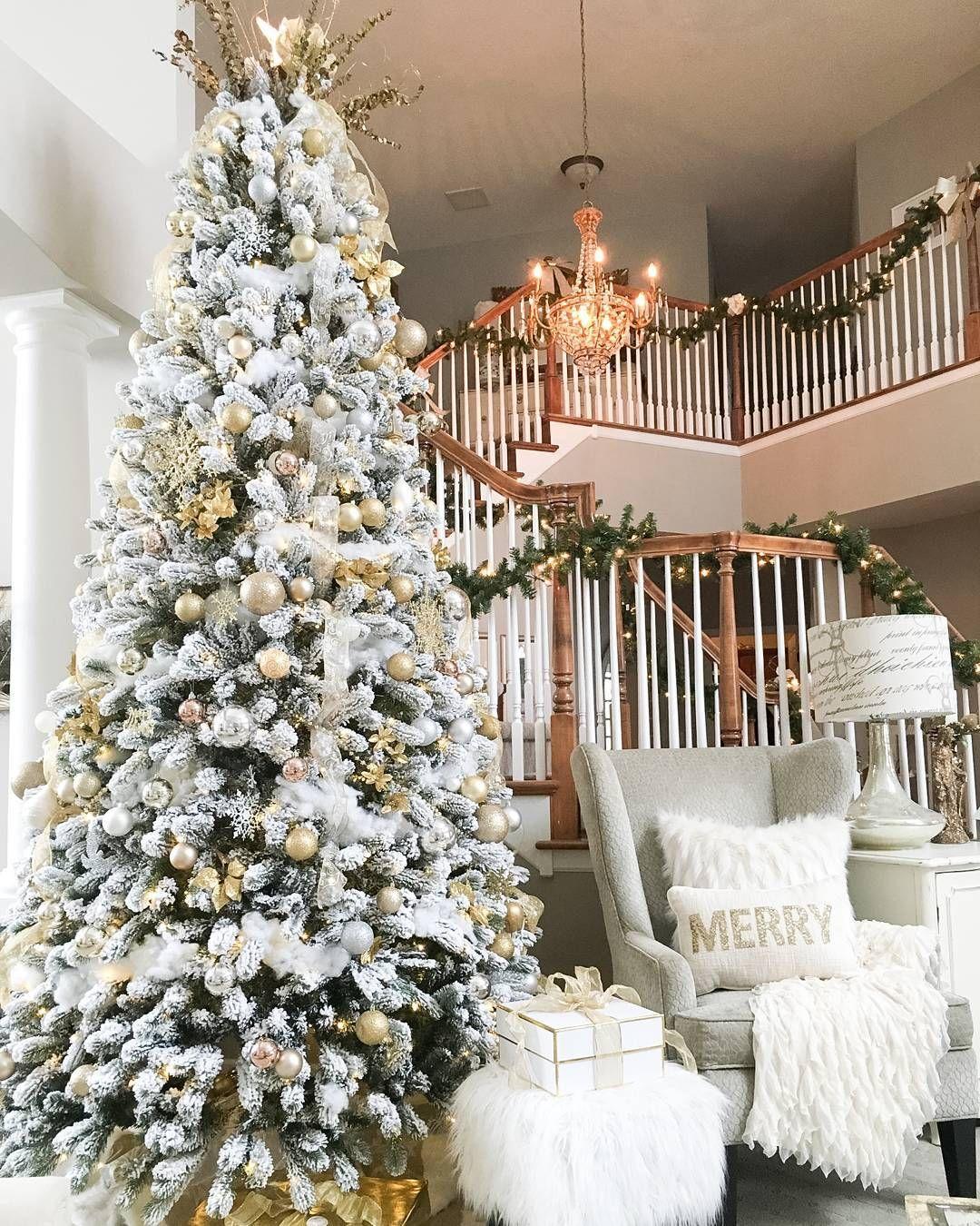 King Of Christmas Trees