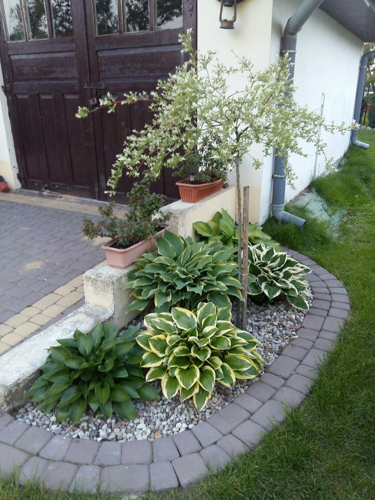 Tiny Front Garden Ideas